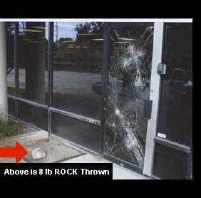8lb Rock Thrown but did not penetrate security window film